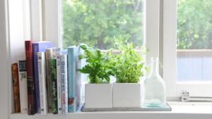 meQasa Office Interior Design Tips