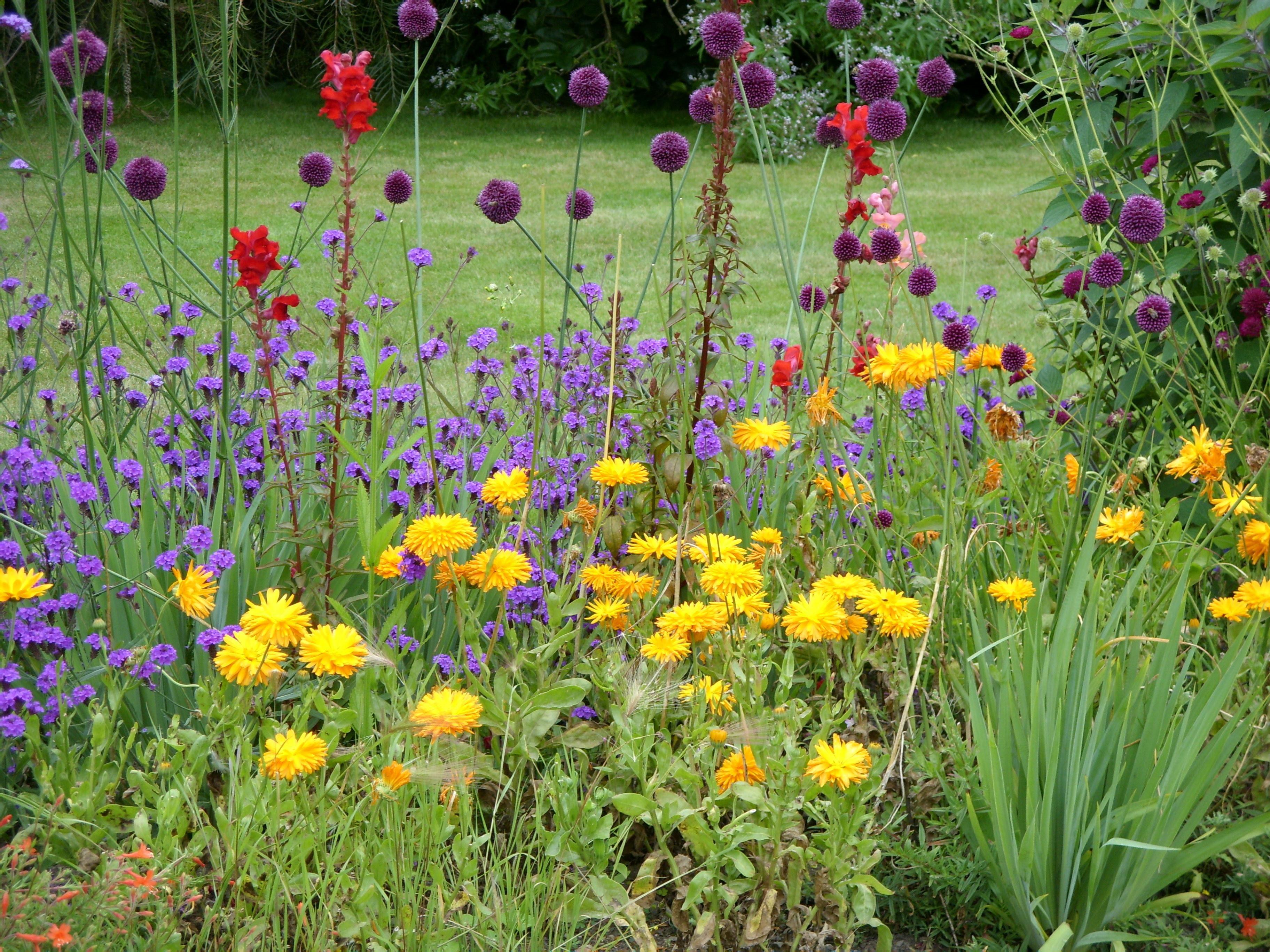 Killing weeds in flower beds - Killing Weeds In Flower Beds 32
