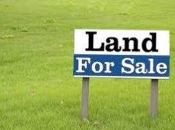 land for sale at SAPEIMAN