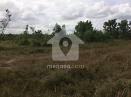 land for sale at Ayikuma (Registered plots)