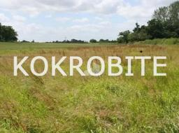 land for sale at Krokrobite