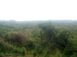 land for sale at Ahwerease - Aburi