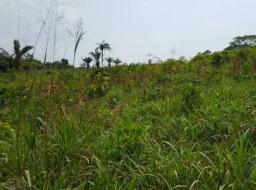 land for sale at Medie- Nsawam Road