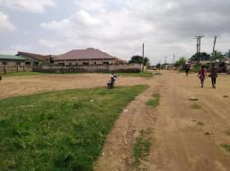 land for sale at Botwe, little roses