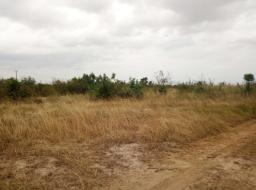 land for sale at Amrahia