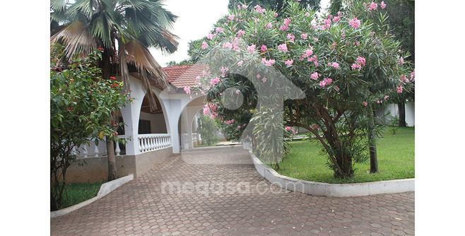 5 Bedroom Swimming Pool House To Let Photo