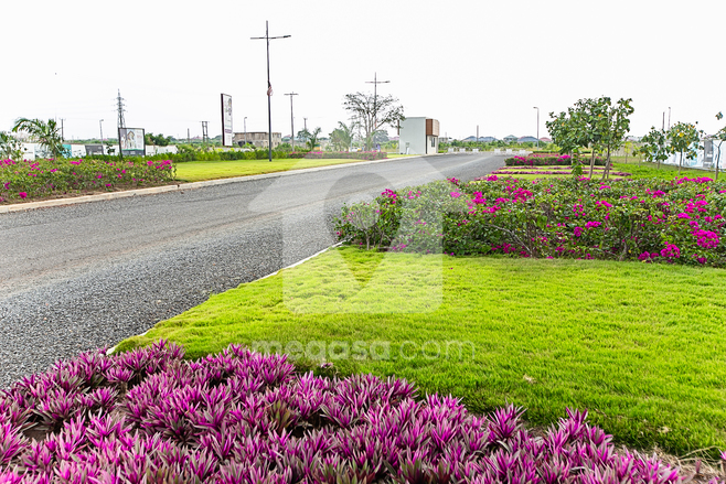 Land For Sale in Appolonia City Photo