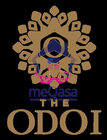 THE ODOI Photo